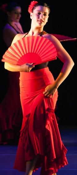 Flamenco Dancerrev